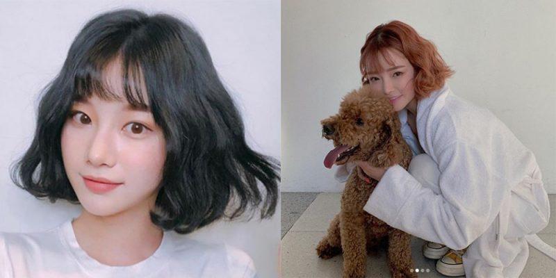 韓式「耳下Bob髮型」的7個變化!每天都有新鮮感......