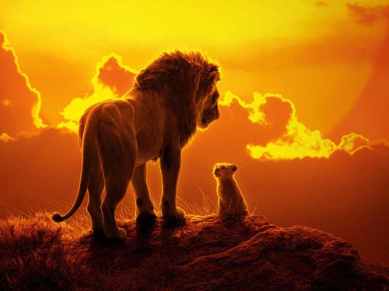 《獅子王》拿了電影售票網站Fandango今年度預售票排行榜亞軍,受歡迎程度極高
