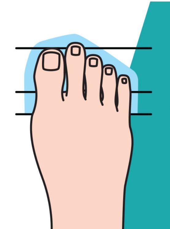 2.腳的食指比較長的你