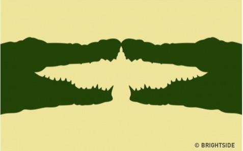 你先看到兩隻鱷魚或是一隻鳥?測你的人際社交能力