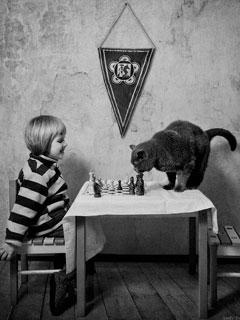 鏡頭下女兒與貓的對話
