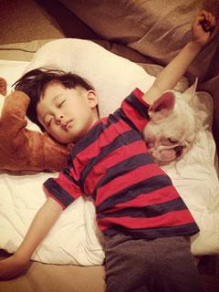 日本男孩與小狗的真摯友情