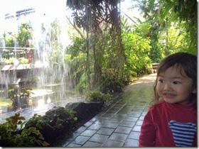 東京夢の島熱帯植物館