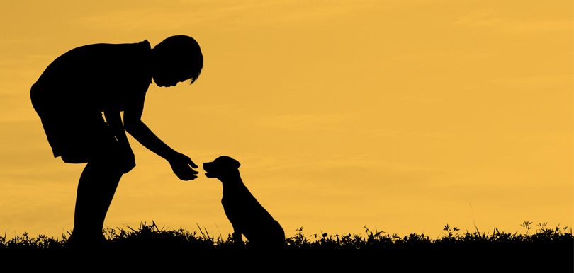 「尋狗啟示」啟發孩子同理心