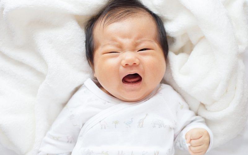 仁濟醫院專欄|如何與不同氣質的孩子相處?