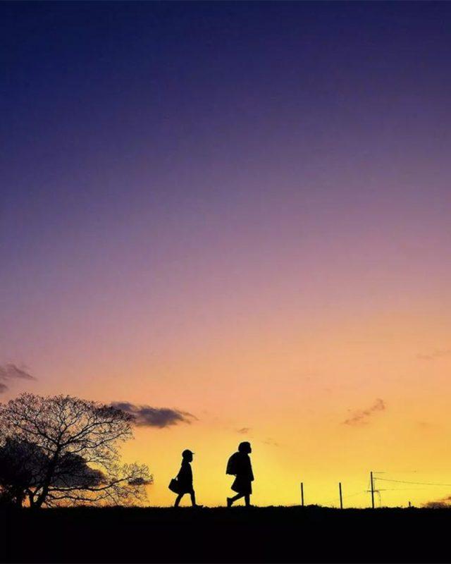 爸爸偷拍女兒三年網友驚嘆畫面如宮崎駿動畫
